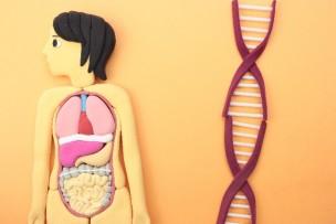 うつ病の原因。遺伝するのか?