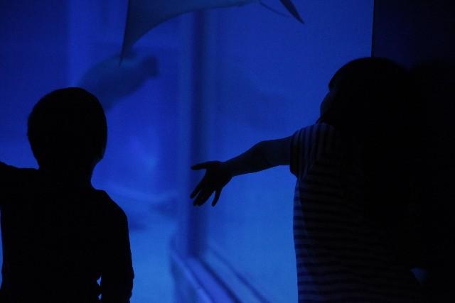 なぜ人は悪夢を見るのか。悪夢の原因と治療法