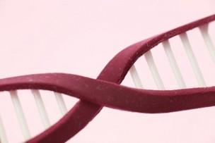 双極性障害と遺伝